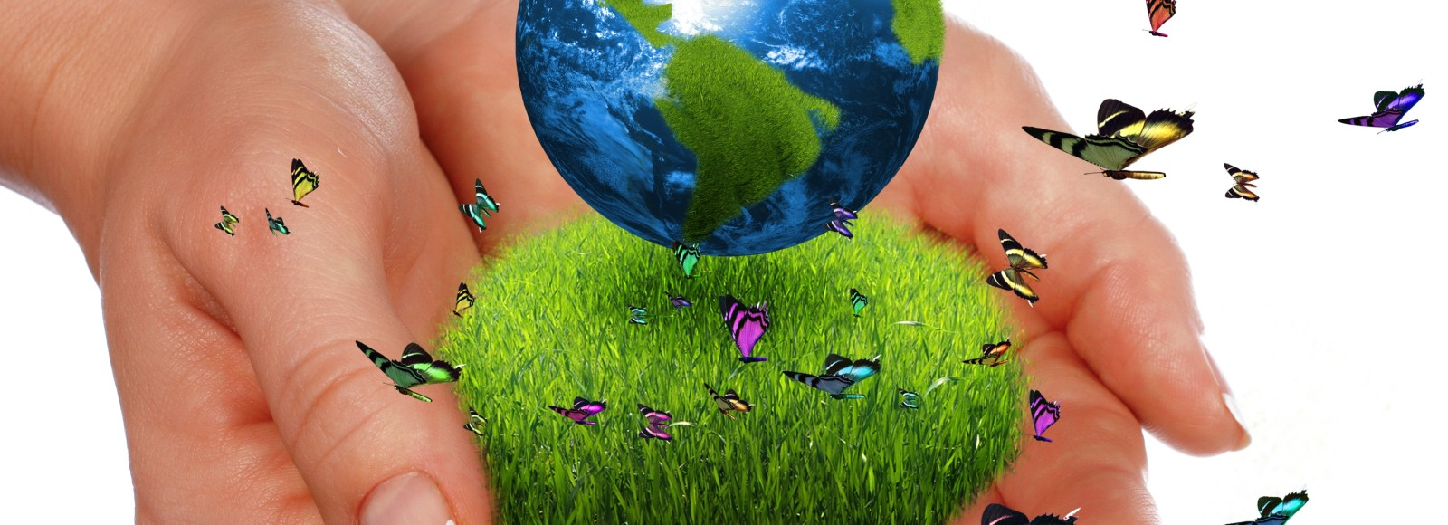 earth-in-our-hands (1)